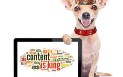 Transformación digital  – El contenido es EL REY