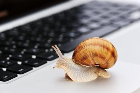 Cómo afecta el rendimiento de tu página web a su posicionamiento